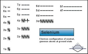 What is the Electron Configuration of Selenium?