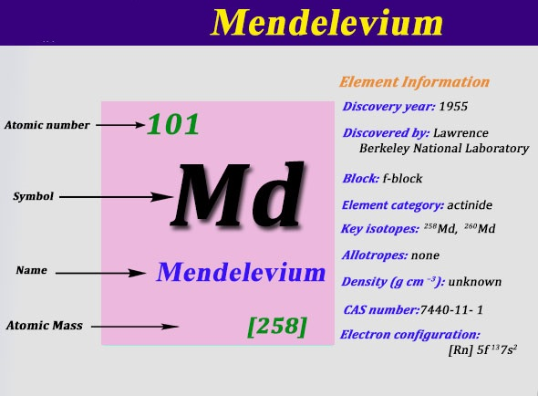 What is the Electron Configuration of Mendelevium
